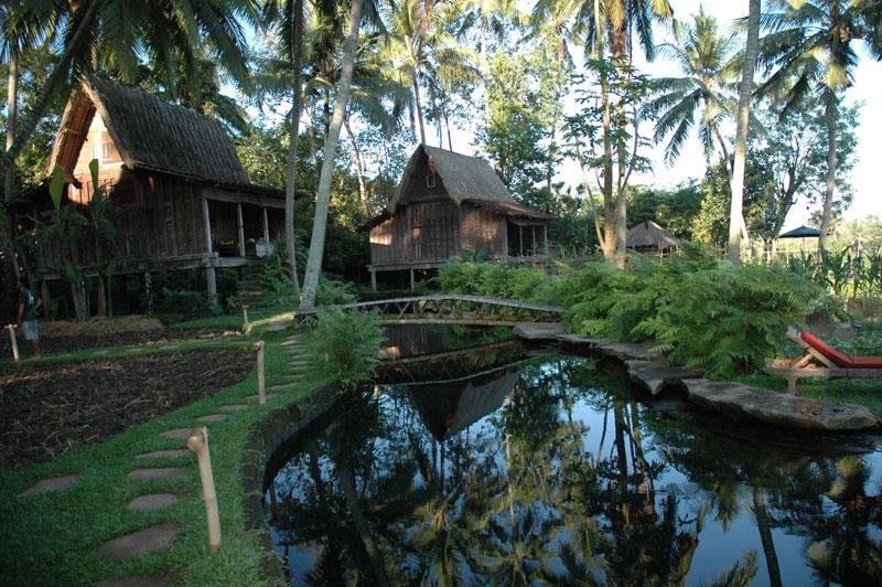Bambu Indah pool